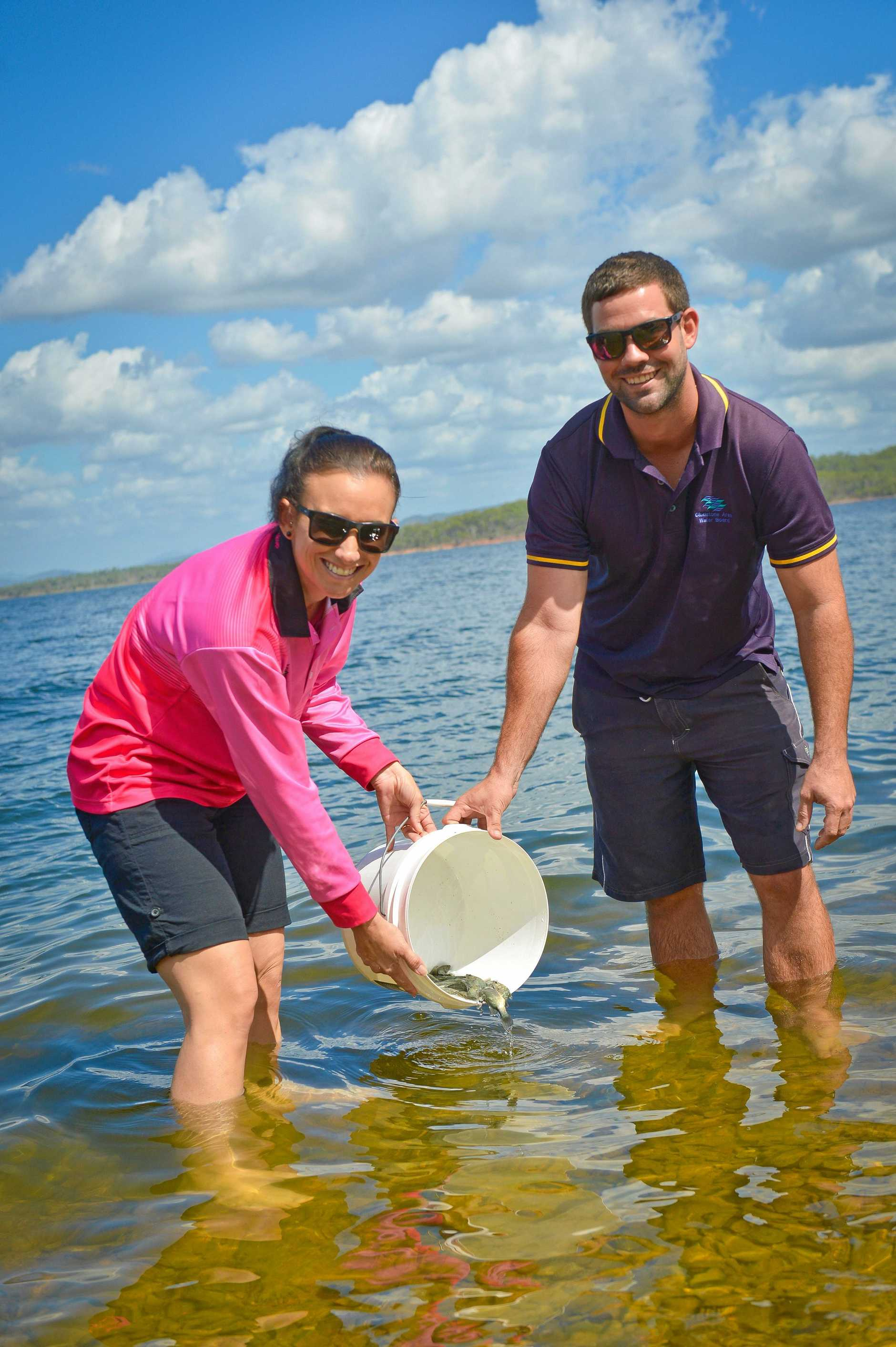 SET FREE: GAWB hatcheries manager Thomas Hayes and Rebecca Long release around 2000 fingerlings into Lake Awoonga on Wednesday.