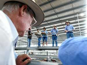 Upgrade secures town's status as Beef Capital of Australia