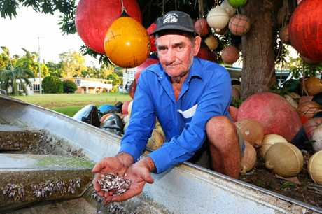 Ron Hurst shows the deep-sea barnacles found growing on an upturned dingy.