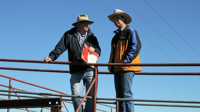 Bid to protect competiton after agent dodging at saleyards