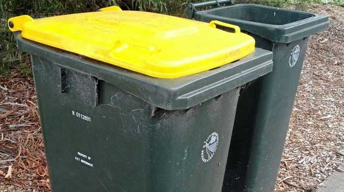 Keep yellow bins clean or be undone by pizza boxes
