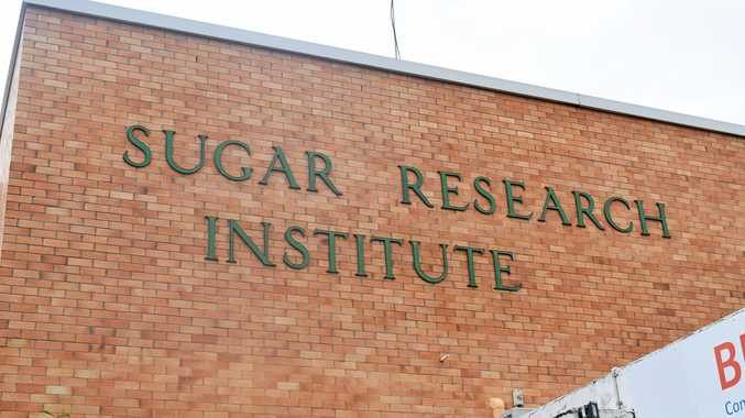 Push to bring sugar researchers back to Mackay