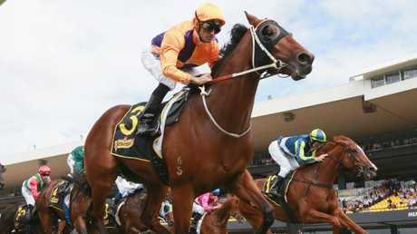 Irukandji scored an impressive win in the Baillieu Handicap at Rosehill last month. Picture: Getty Images