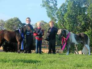 Are these little fellas Gympie's cutest athletes?