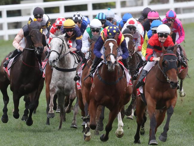 This latest incident follows hot on the heels of Aquanita inquiry into alleged horse doping.