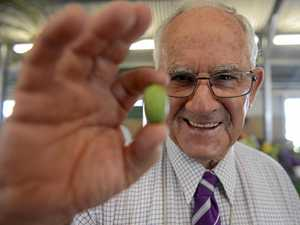 Worlds smallest cucumber wins big at the Grafton Show
