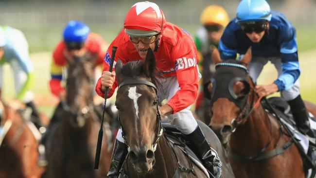 Damien Oliver and Seabrook take out The Champagne Stakes at Royal Randwick on Saturday. Picture: Mark Evans/Getty Images