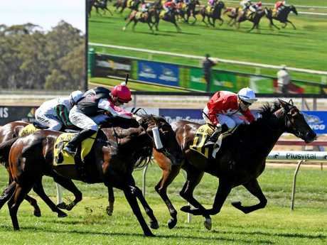 Noel Callow and Thrillster (red silks) make their presence felt in the VOBIS Gold Rush at Bendigo on April 7. Picture: AAP