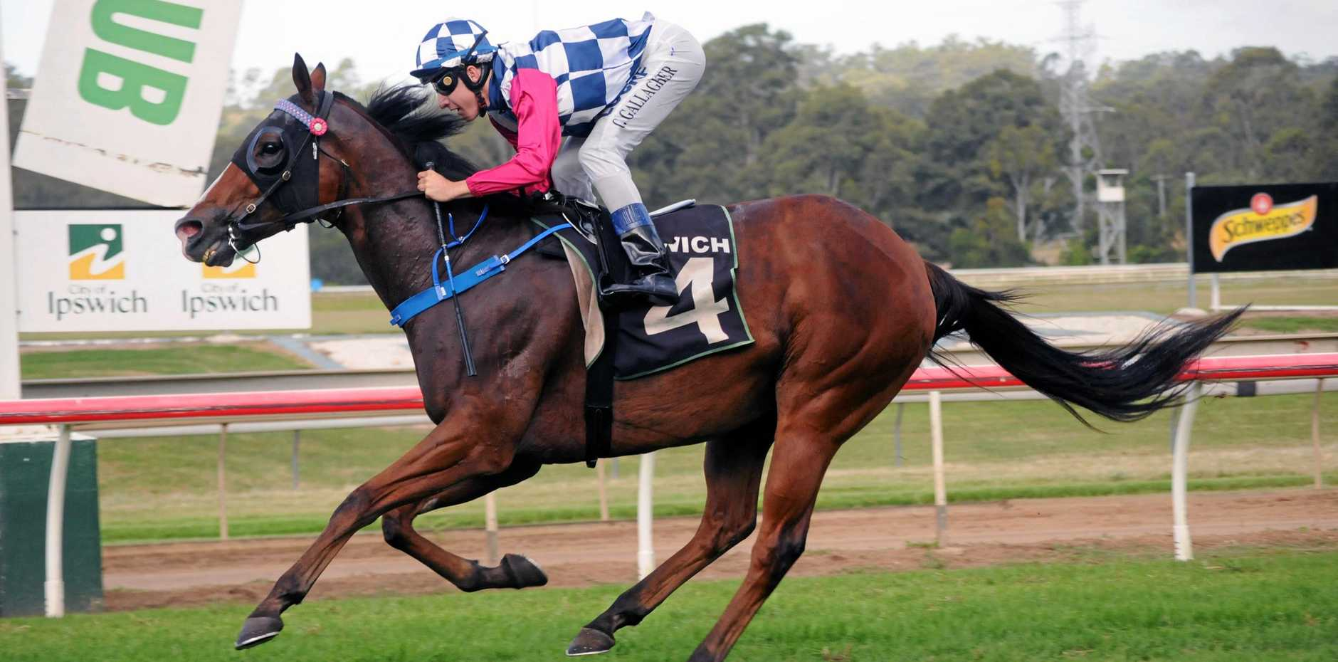 POPULAR VICTORY: Rideonabigjetplane, ridden by Clayton Gallagher and trained by Ipswich-based Garry Smith.