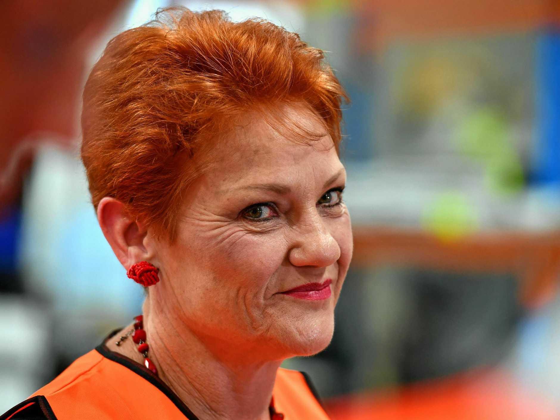 One Nation Leader Senator Pauline Hanson. (AAP Image/Mick Tsikas)