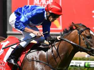 Payne's Zizzis back for Breeders'