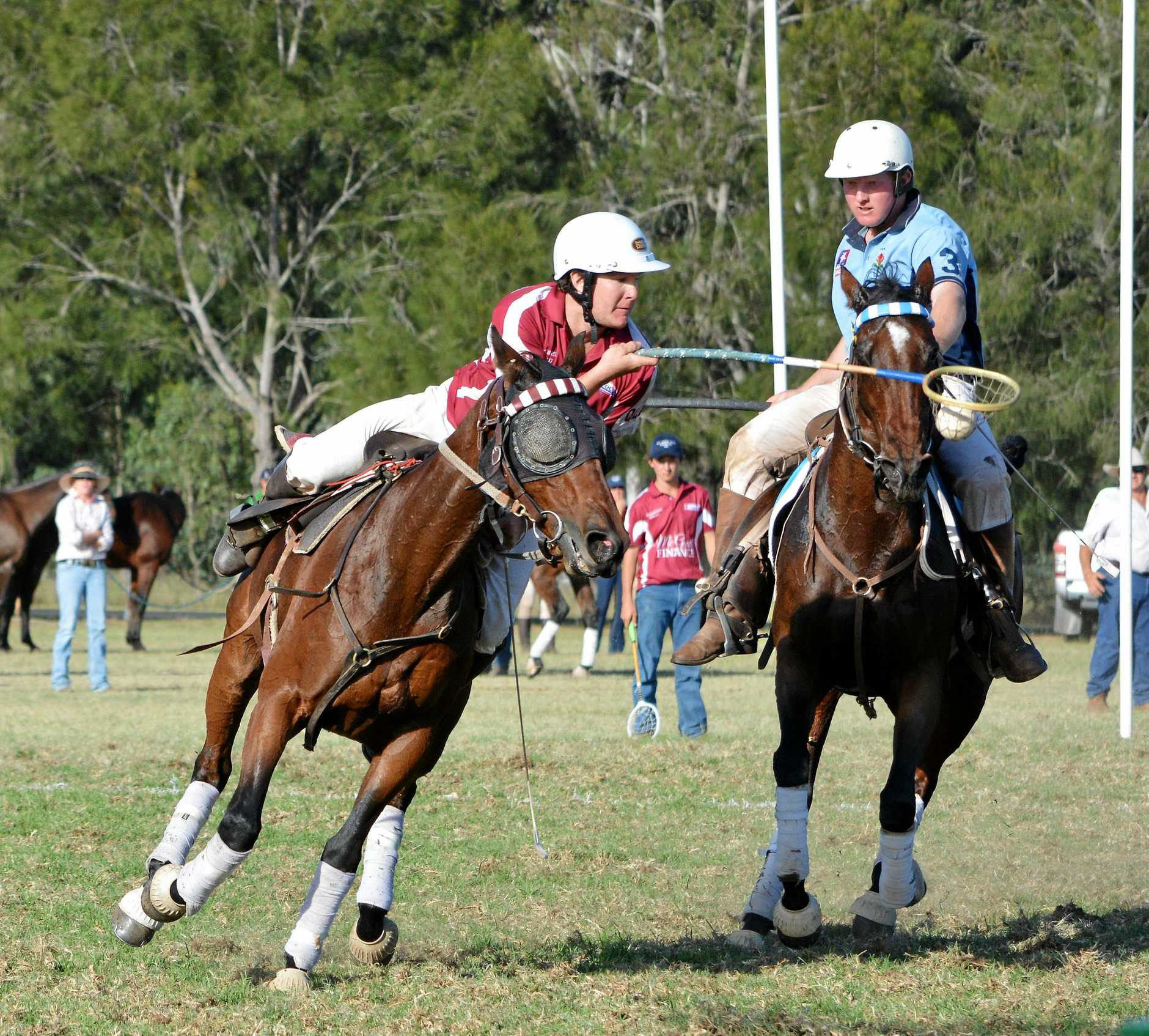 Matt Taylor in possession for Queensland in the Barastoc Interstate Series polocrosse.