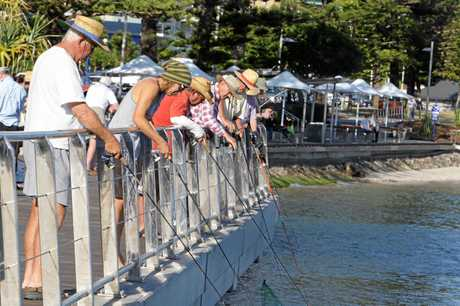 JOIN THE CLUB: The warm weather always brings out the fishermen and the fish at Caloundra's boardwalk.