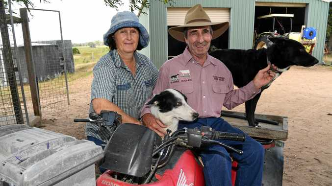 You'd be barking mad to miss Friday's AgroTrend special