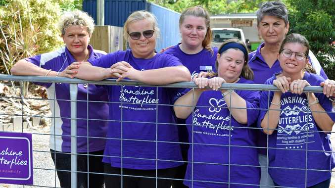 SOS: Leanne Walsh and her crew at Sunshine Butterflies need some urgent assistance.