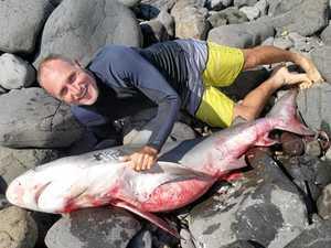 "Surfer's shark encounter: ""I grabbed the bloody thing"""