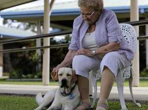 Dog brings smiles to residents