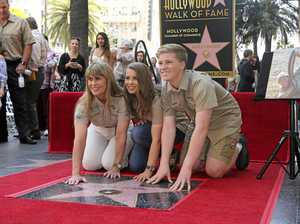 Steve Irwin gets Hollywood star