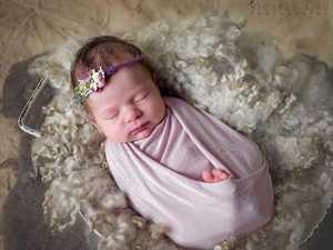 362 babies born on the Sunshine Coast
