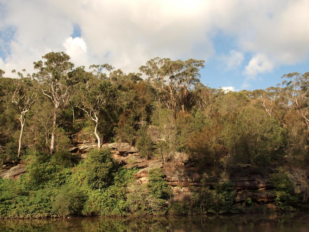A woman's body was found by kayakers at Lane Cove River. Picture: Flickr/ Hasitha Tudugalle