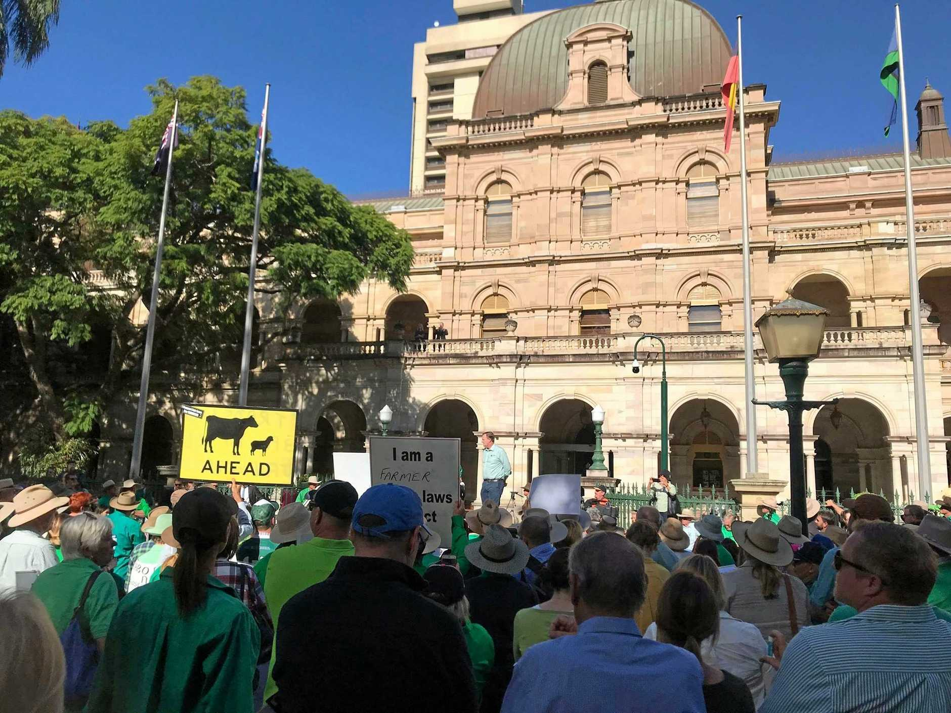 STRONG CROWD: Over 500 people out the front of Qld Parliament House, Brisbane making their voices heard. Proposed new vegetation laws will mean that 1.7 million hectares of developed farming land will be locked up, with no compensation. This legislation is devastating for Queensland farmers, restricting their use of their own land.