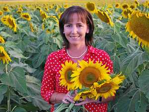Paddock of sunflowers dedicated to baby Nate
