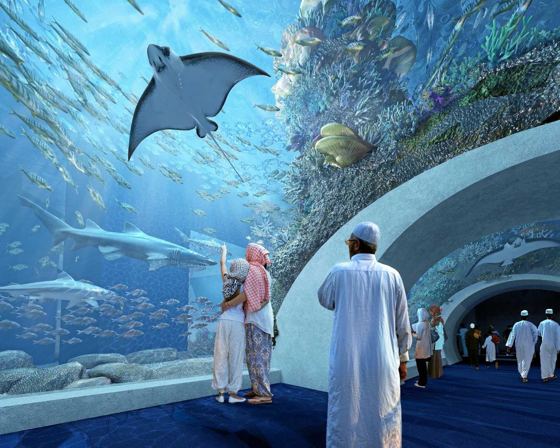 An artist's impression of main aquarium tunnel at the public aquarium in Muscat, Oman, built by Advanced Aquarium Technologies.