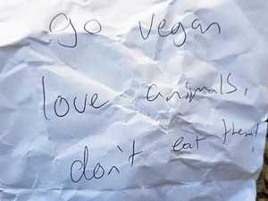 Mysterious vegan letters spark mailbox outrage