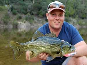 Colour and technology do the job in lure fishing