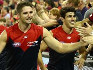 Demons confident Hogan, Petracca fit