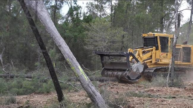 Generic picture of land clearing.