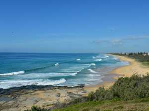 Man dies after immersion on Sunshine Coast whale tour