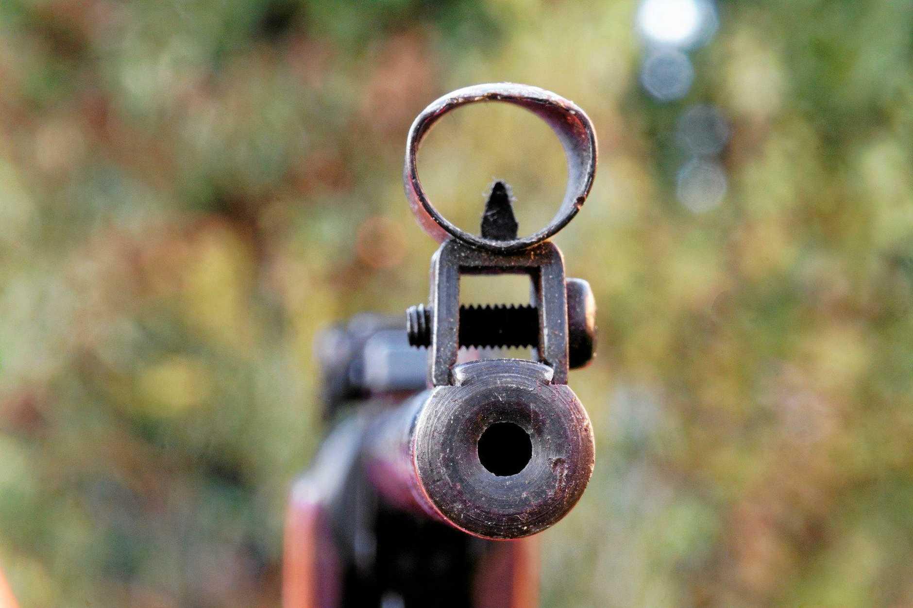 gun, rifle, generic, shooting, barrell