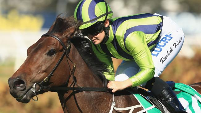 Live And Free showed an impressive turn of foot to kick away and win at Rosehill on Saturday. Picture: Mark Evans/Getty Images