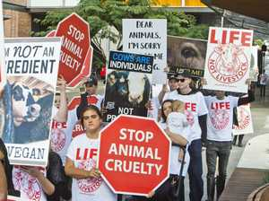 Animal activists in Toowoomba