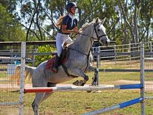 Horses jump-start the show