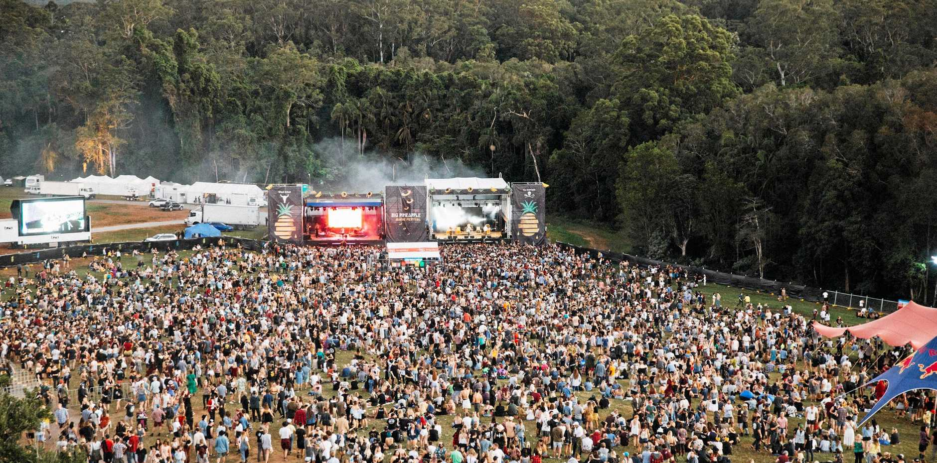 14,000 punters are expected to attend this year's Big Pineapple Music Festival, the biggest year yet.