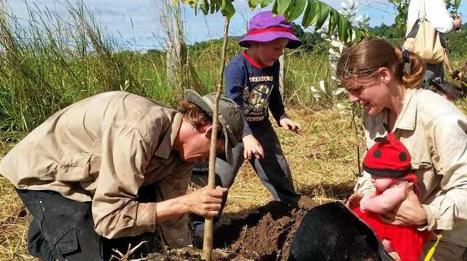 MULLUM MOTHERS: Mullum Music Festival's annual tree planting will take place on Mother's Day.