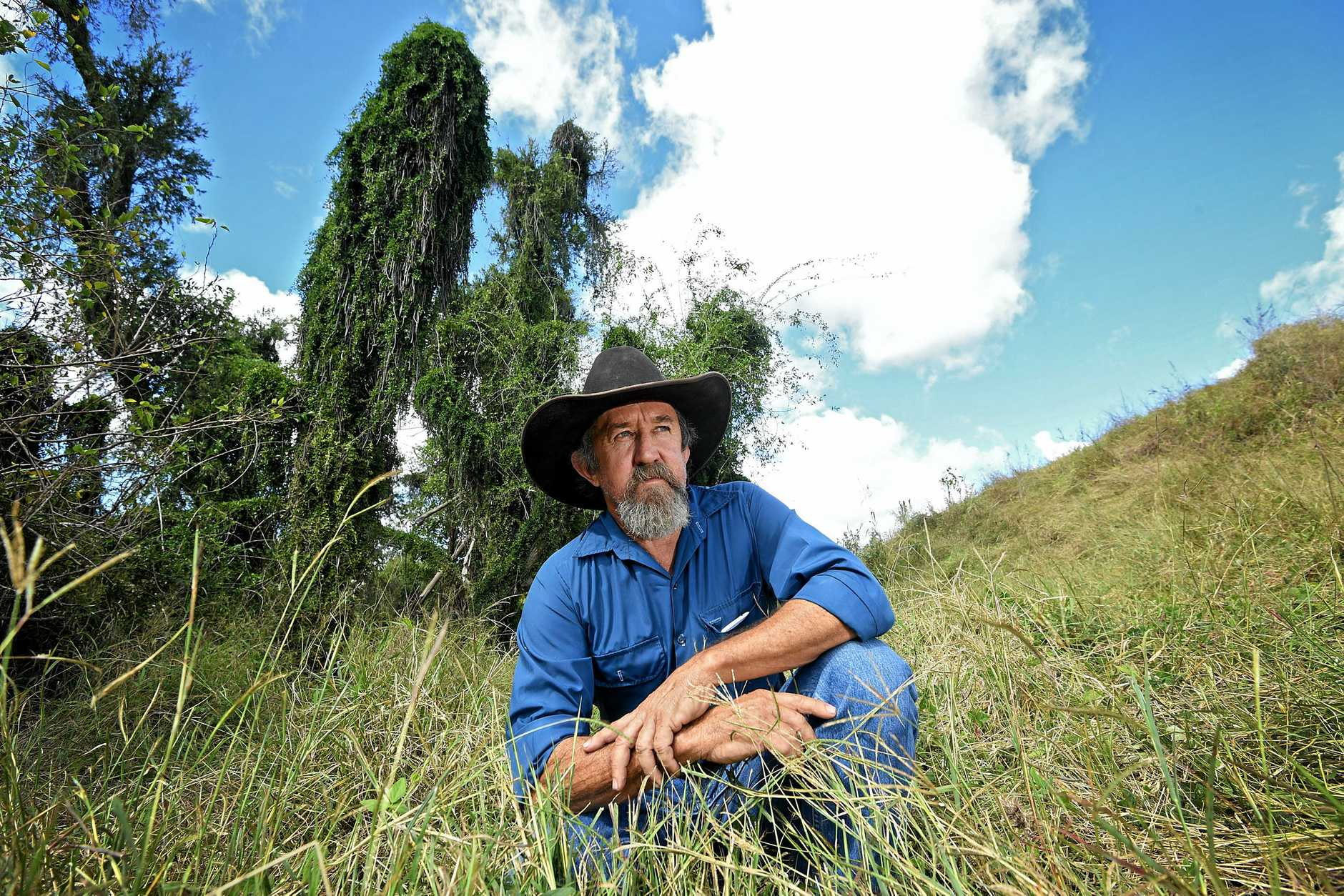 TANGLED: Graham Sheppard says the new vegetation laws have left farmers unable to stop the spread some of pests.