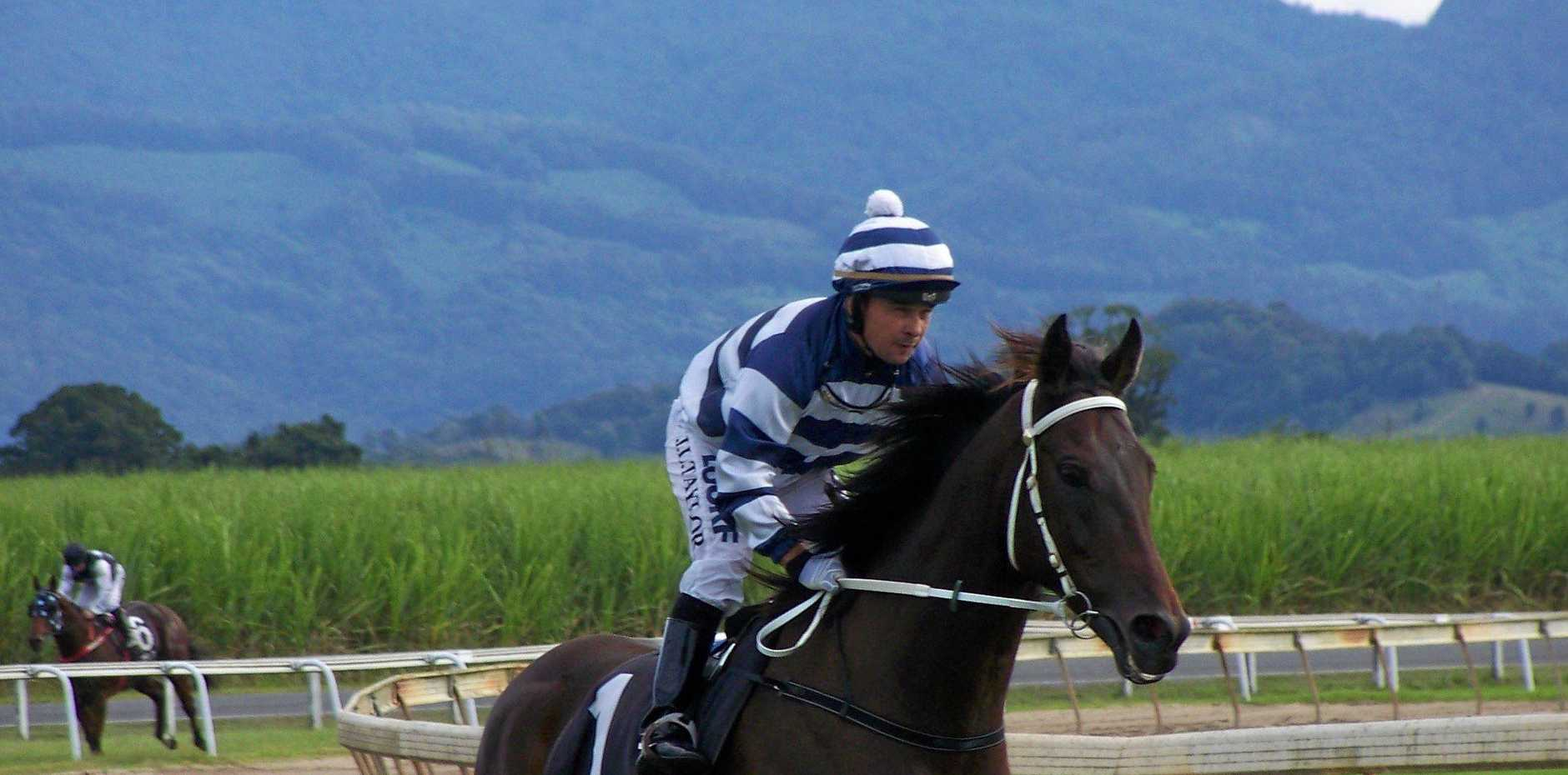 Past Mt Warning Handicap winner 'Bernie Of Babylon'.