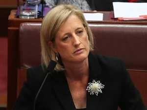 Dual citizen scandal: Labor senator quits, others to follow