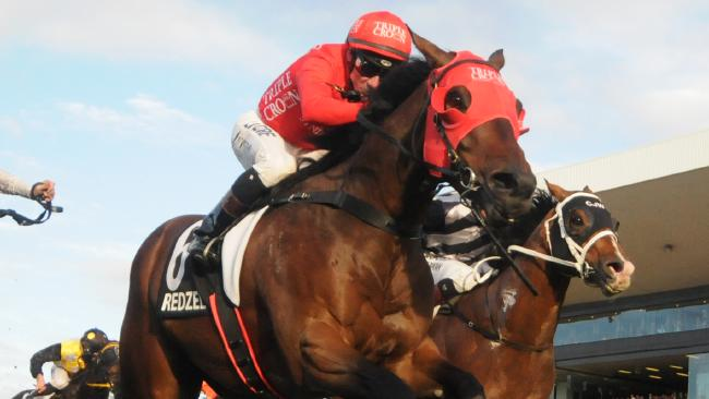 Redzel impressed in the trial.