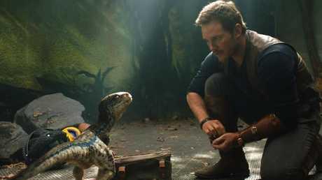 Chris Pratt will pocket $US10 million for his work in the next Jurassic Park film.