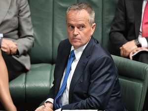 Citizenship debacle puts heat on Shorten