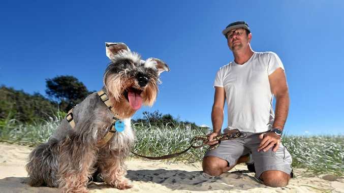 Vince Della Croce was walking his dog last week when his pet Harvee was caught in a fox trap at Mudjimba Beach and almost broke her leg. Council say the fox traps are there to protect turtle hatchlings.