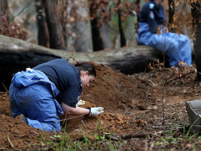 despite an extensive police search of the Numinbah Valley, Linda Sidon's body has not been found. Picture: Adam Head.