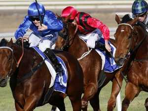 Blue Army bullish about Stradbroke chances