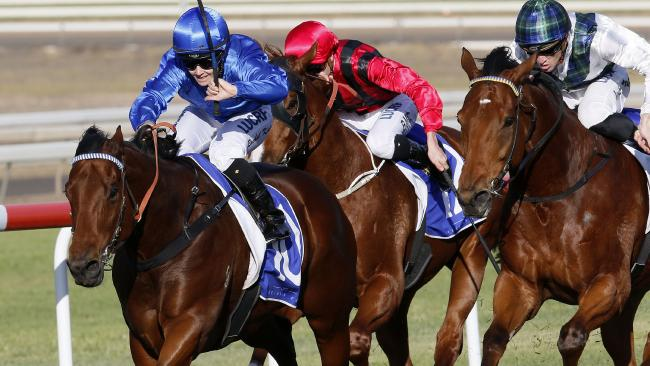 Osborne Bulls will target the Stradbroke after winning the Sluskin Star Stakes at Scone. Picture: AAP