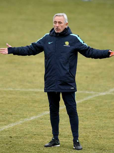Will Bert Van Marwijk implement some of those deep-thinking tactics into the Socceroos camp at the World Cup