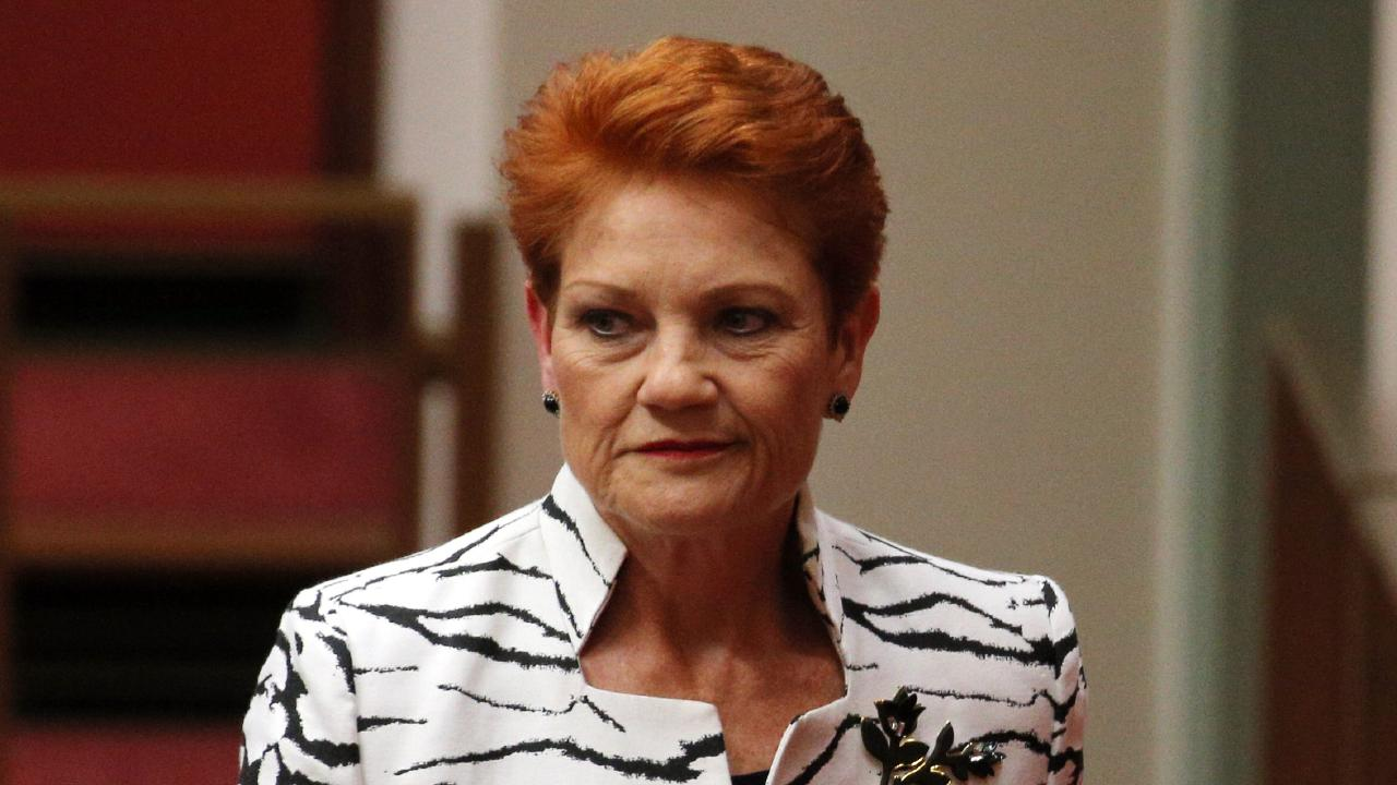 Senator Pauline Hanson says Australia's gun laws don't need to be changed. Picture Gary Ramage